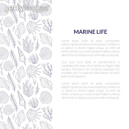 Marine Life Banner Template with Place for Text and Underwater Sea Life Pattern, Undersea World with Seaweed and Seashells Vector Illustration