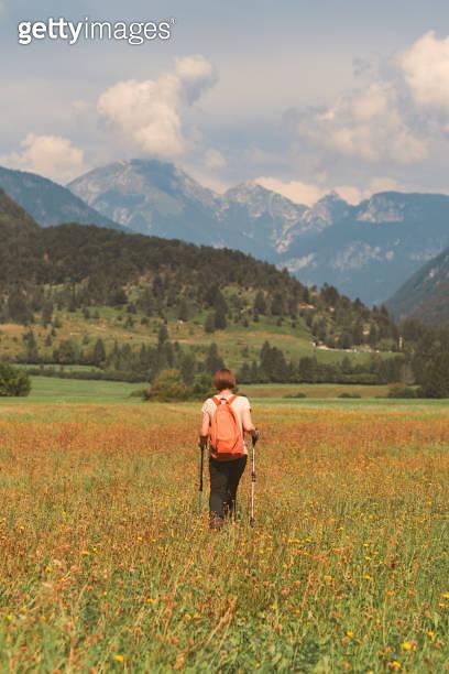 Female hiker is trekking in alpine countryside landscape