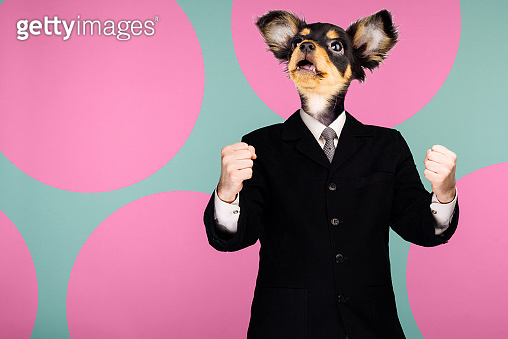 Psychedelic collage combining a man in a suit and a dog's head. The character looks up. The mouth is open in surprise.