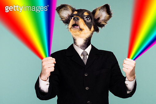 Psychedelic collage combining a man in a suit and a dog's head. The character holds a rainbow in his hands and looks up. The mouth is open in surprise.