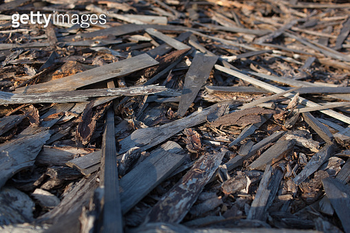 Abstract background with felled wood