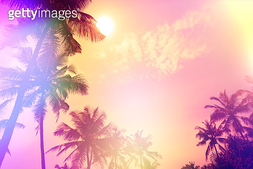 Palm sunset silhouettes tropical beach party stylized