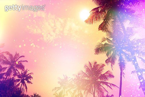 Palm sunset silhouettes tropical beach party fairytale stylized