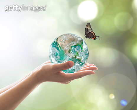 World environment day, sustainable ecology and environmental friendly concept with green earth planet on volunteer's woman hands. Element of  image furnished by NASA.https://images.nasa.gov/details-PIA18033.html