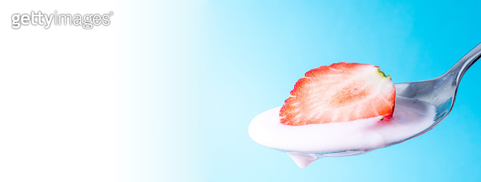 Fresh ripe juicy slice strawberry on a spoon with yogurt cream close-up on a blue background with a gradient to white color. Large size photos.