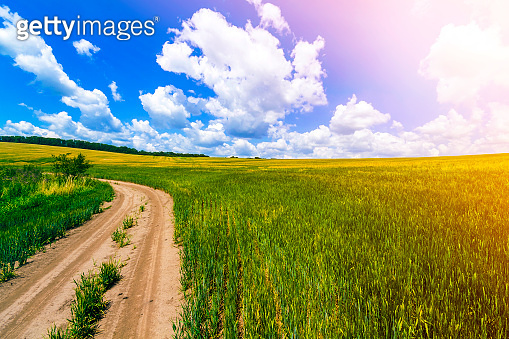 Beautiful summer landscape with fresh green grass, dirt gravel road, blue sky and white puffy clouds. Path through crop fields. Agriculture and harvest concept. Idyllic environment friendly landscape.