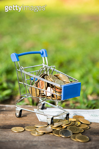 Finance, saving and shopping, banknote and coins in  shopping cart on natural green background, Business investment growth and Save money for prepare in future concept,  selective focus.