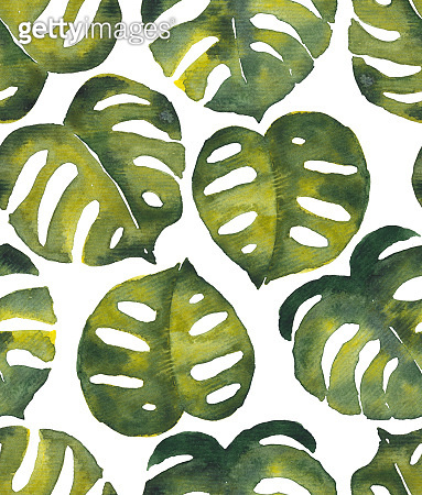 Seamless tropical watercolor pattern with monstera leaves