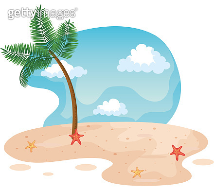 palm tree in the beach with starfishes in the sand