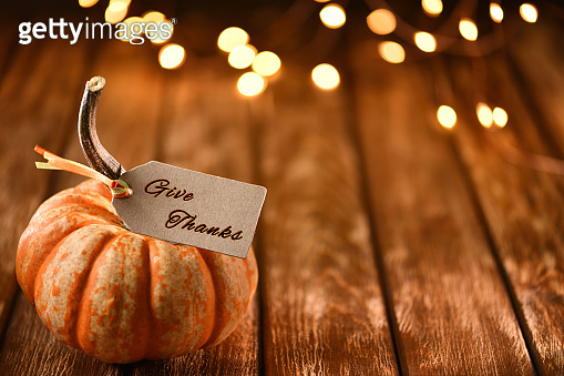 Thanksgiving still life with pumpkins and greeting card on a rustic wooden table
