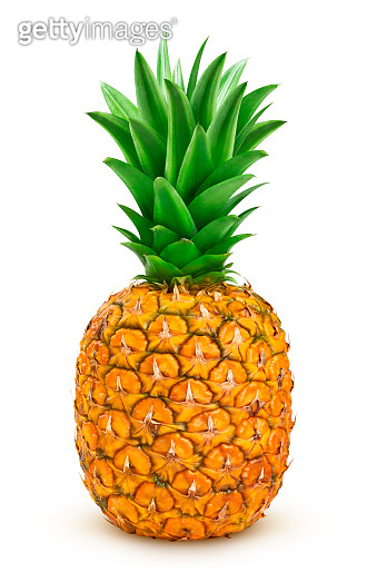 Ripe pineapple isolated on white background with clipping path