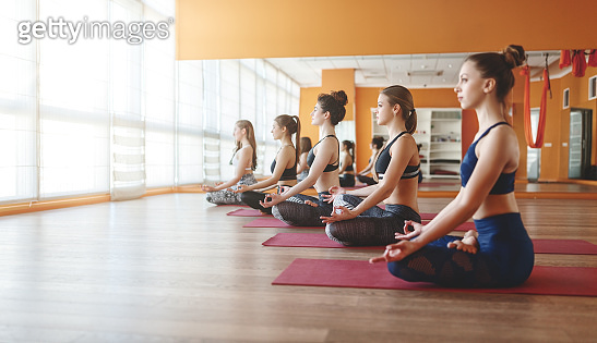 group of people engaged in yoga class meditate in Lotus position