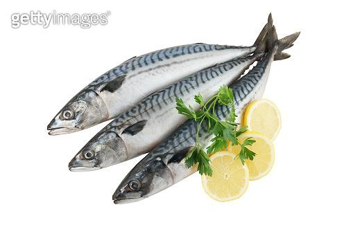 Fresh mackerel fish with greens and lemon isolated