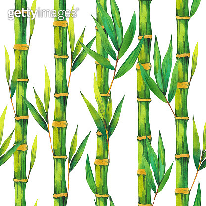 SPA watercolor seamless pattern. Illustrations bamboo branch with leaves. Nature background.