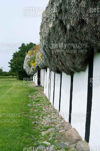 Denmark: Exterior wall of an old half-timbered farmhouse thatched with a seaweed roof