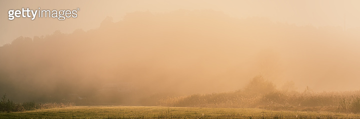 Rustic meadow in the autumn fog in an early sunny morning.