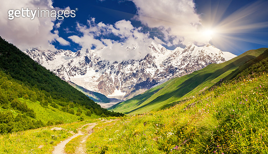 Alpine meadows at the foot of  Mt. Shkhara. Upper Svaneti, Georgia, Europe.