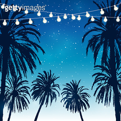Summer party background with palm trees silhouettes on night starry sky