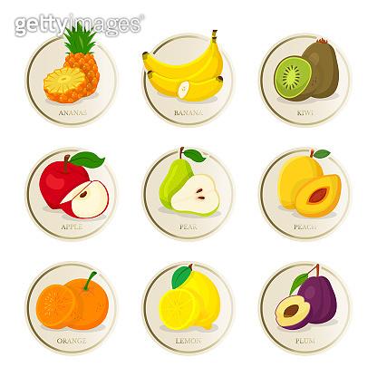 Tropical fruits vector illustrations set