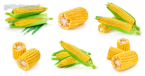 Corn on the cob kernels