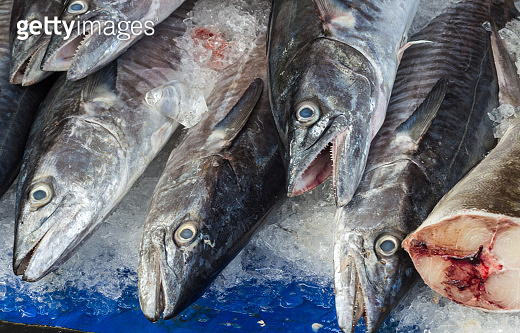 Fresh fish on ice in the market