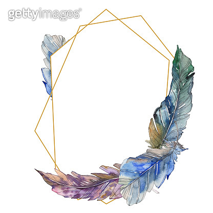 Bird feather from wing isolated. Watercolor background illustration set. Frame border ornament square.