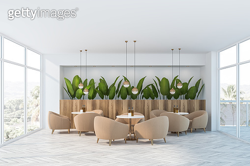 White cafe interior with plants