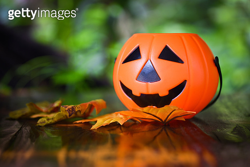 Halloween background decorated holidays festive concept / leaves autumn pumpkin halloween decorations for party accessories object on wooden nature