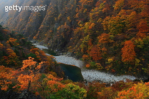 Valley of autumn leaves in Iwate Prefecture