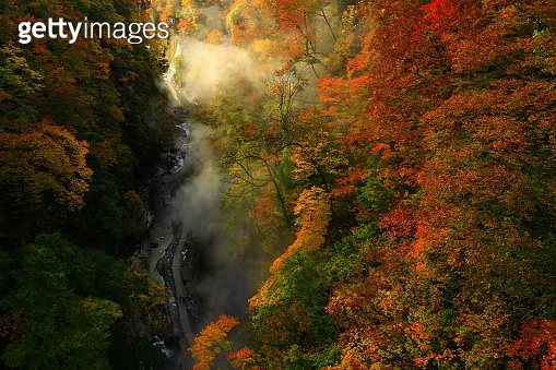 Akita Prefecture, Autumn Valley