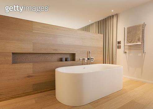 Home showcase interior bathroom