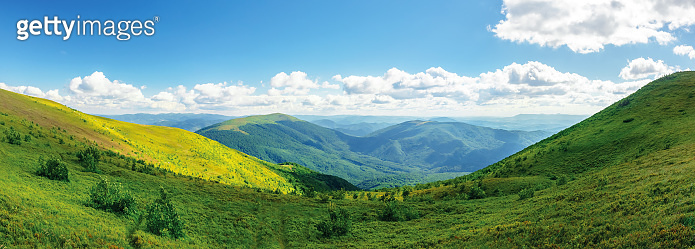 panoramic mountain landscape in summer