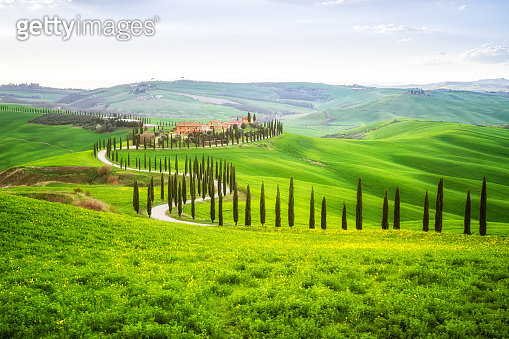 Green spring in Tuscany