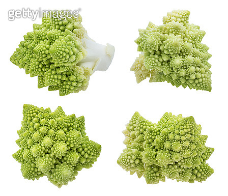 Roman cauliflower isolated on white background