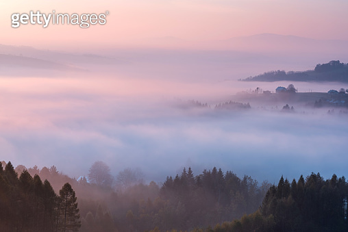 Pastel Clouds at Sunrise over Fog and Forest