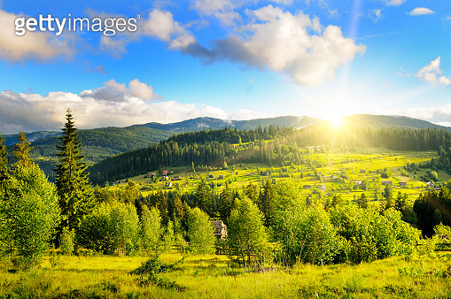 Slopes of mountains, coniferous trees and clouds in the evening sky.