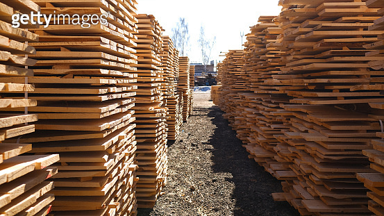 Wood timber in the sawmill. Piles of wooden boards in the sawmill.