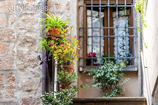 Orvieto, Italy alley street in small historic medieval town village in Umbria with nobody green plants colorful flowers and steps up to house with window