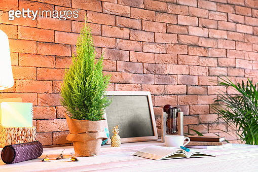 Pot with lemon cypress tree on table in room