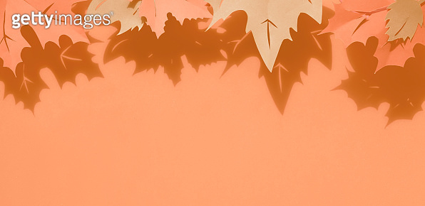 Autumn leaves with shadows, flat lay with copy-space on paper background