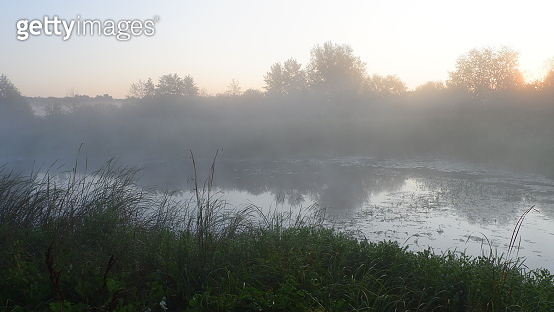 Misty dawn at the river, beautiful summer morning in wood with sun rays and a fog from the river