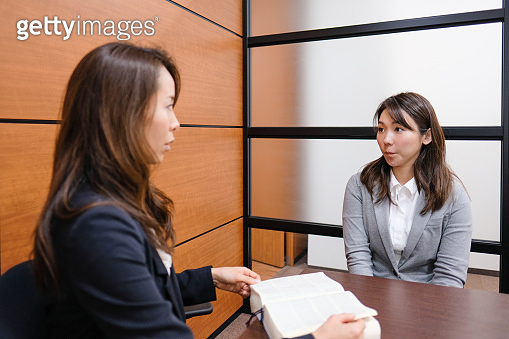 Consultant giving advise to customer in conference room