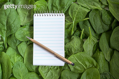 paper notepad and pen for recipe or shopping list on a full frame background from fresh organic spinach leaves, copy space, high angle top view from above