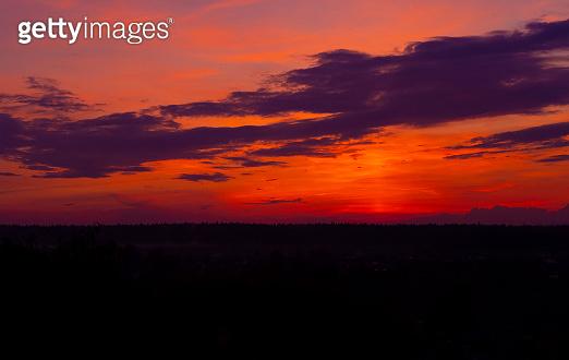 Red sunset forest landscape