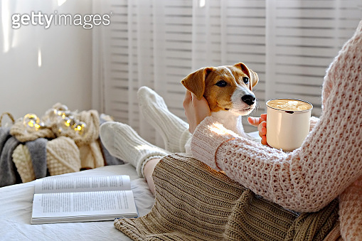 Unrecognizable female sitting at home with her pet doggy on sofa with partial interior view.
