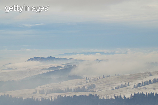 Freezing fog. Winter day in Tatra Mountains. Poland, Podhale