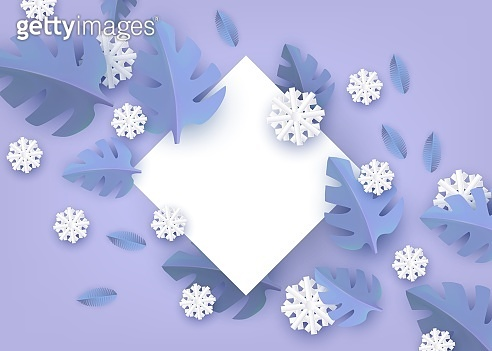 Vector illustration of winter natural banner - blank white rhombus shape with plant leaves and snowflakes.