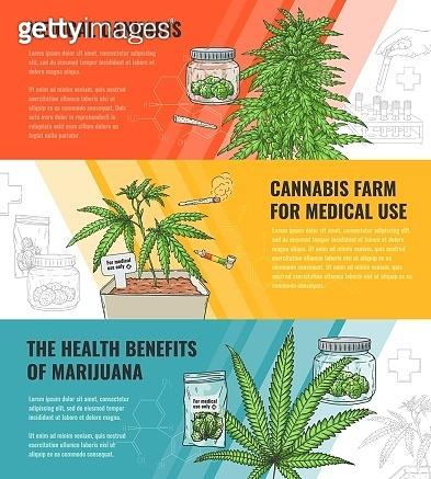 Vector illustration set of medical use and legalization of marijuana horizontal banners.