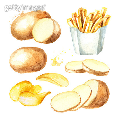 Potatoes set with raw potato, french fry sticks and Crisps. Watercolor hand drawn illustration, isolated  on white background