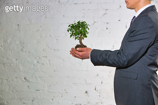 Young businessman holding plant against wall at office